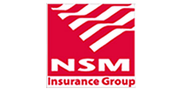 NSM Insurance Group logo